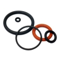 Repair kit seals & o-ring